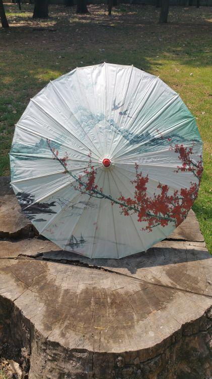 Coloridas sombrilla de papel ideales para protegerte de la radiación solar, decorar una fiesta o una habitación. -portada